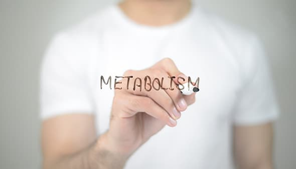 What Is Metabolism And How To Speed It Up